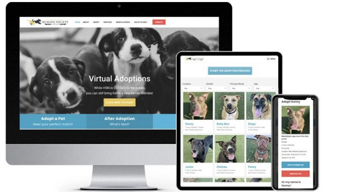 Pet Pages Pro PetPoint Plugin & Custom Development Featured Business: Humane Society Naples | RGB Internet Systems
