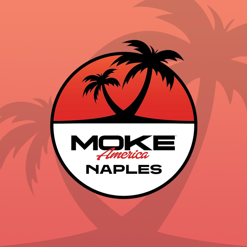 Logo Design, Graphic & Print Design Portfolio S1065 | RGB Internet: A Florida Website Design Company