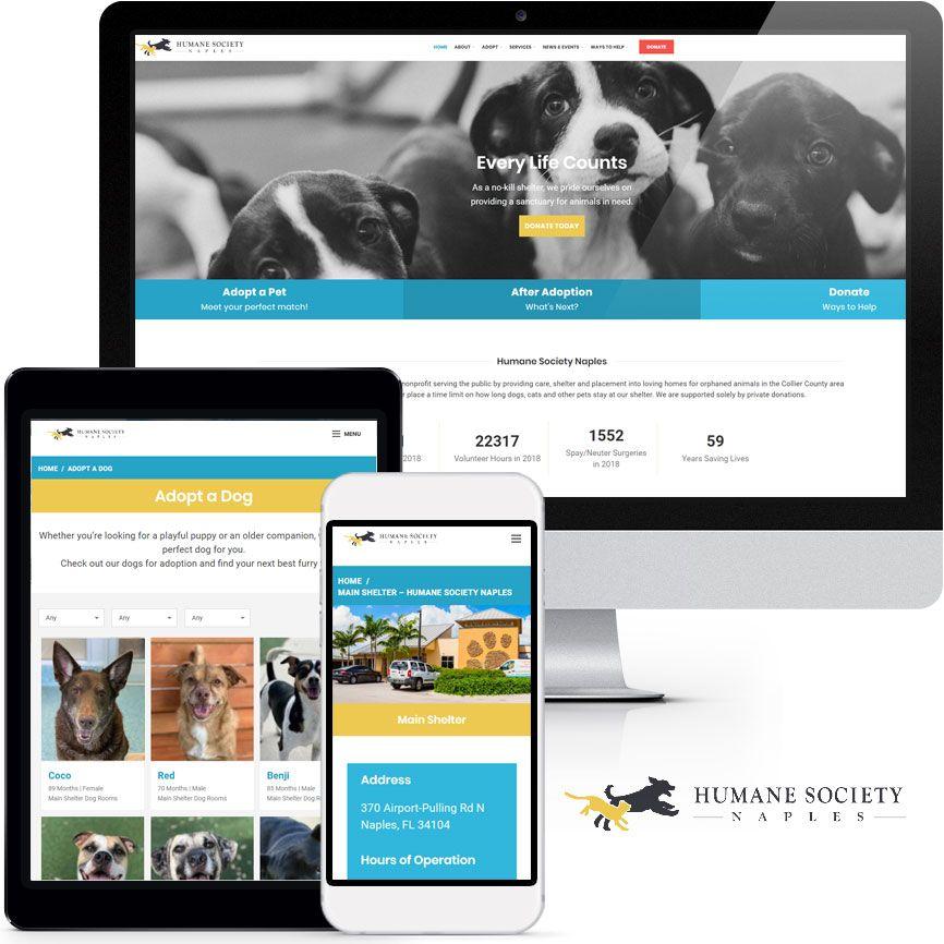 WordPress Website Design Portfolio S679 | RGB Internet: A Florida Website Design Company